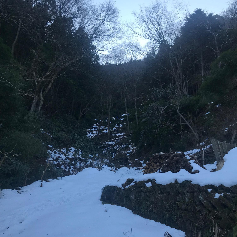 Fujino - back garden
