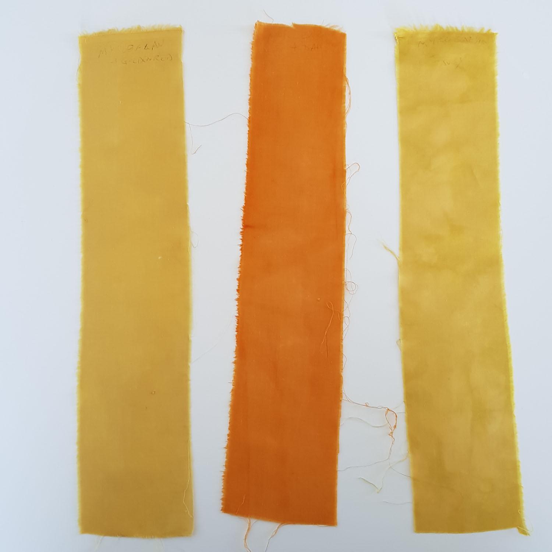 myrobalan and yellows - goldenrod dahlia and tansy_edited-1.jpg