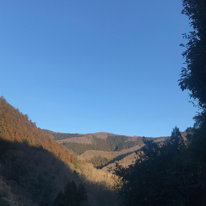 Fujino view 10.jpg