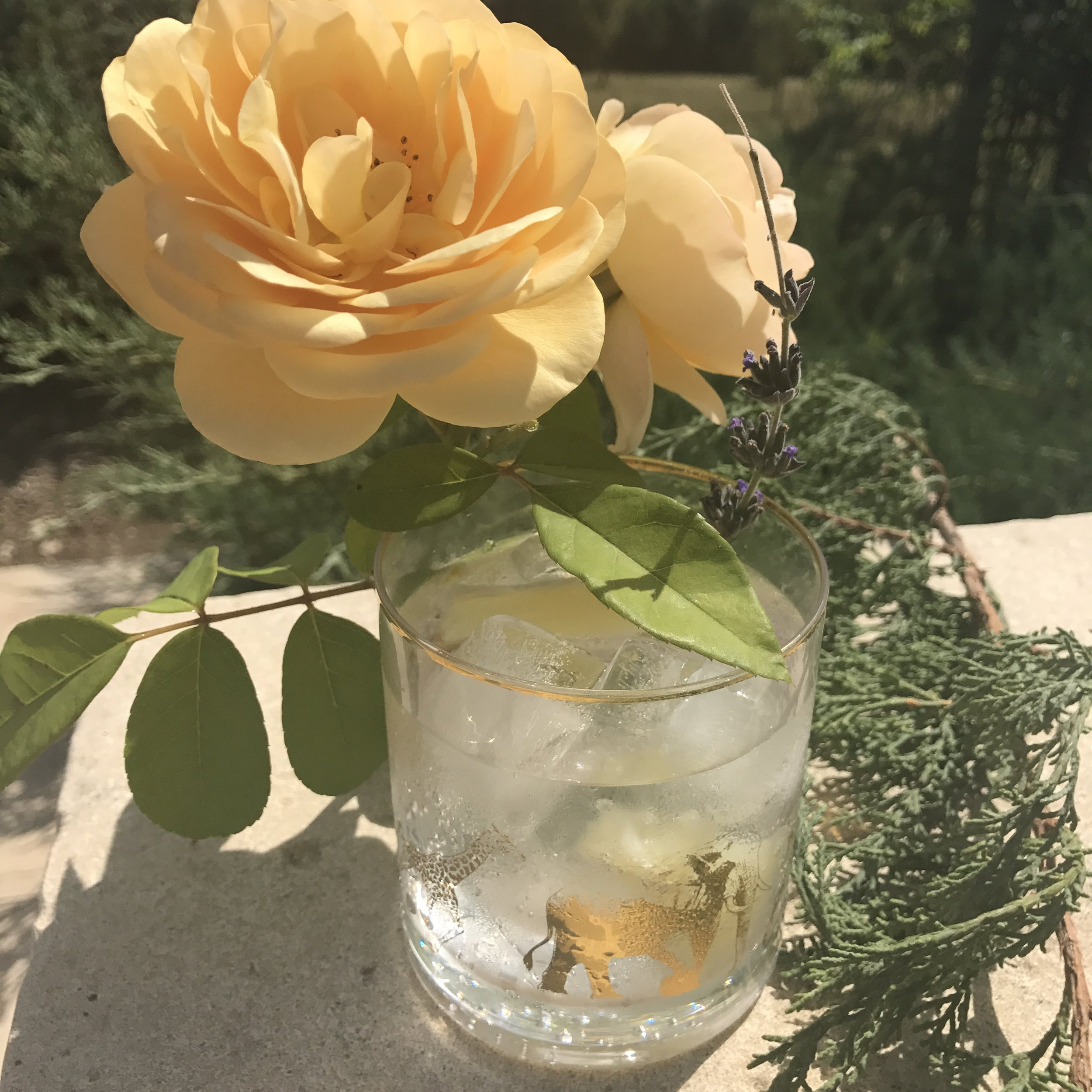 Gin in the South of France... Bliss