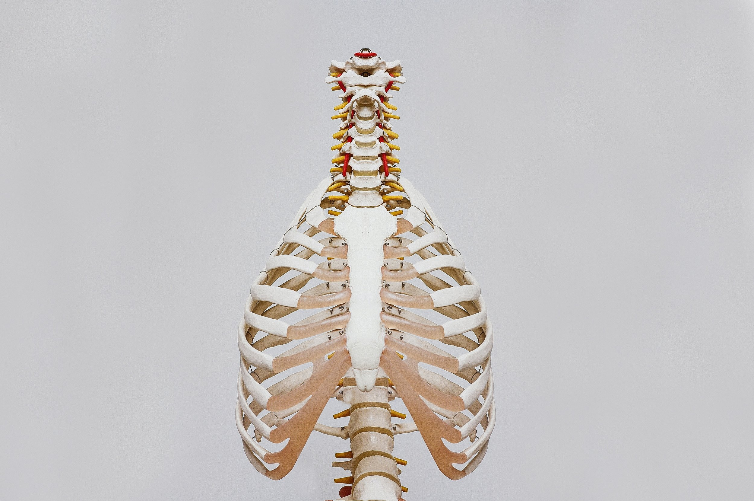 """""""I'm finding that I'm short of breath, and constantly hunched over…""""   With a centered alignment in your posture, you breathe better and your systems are working together.  We specialise in Posture Scans, a digital scan based on your posture, to identify problem areas and postural distortion in your spine.  Chiropractic treatment can improve any postural distortion in your spine - leading the way for better mobility, breathing, and a great sense of wellbeing."""