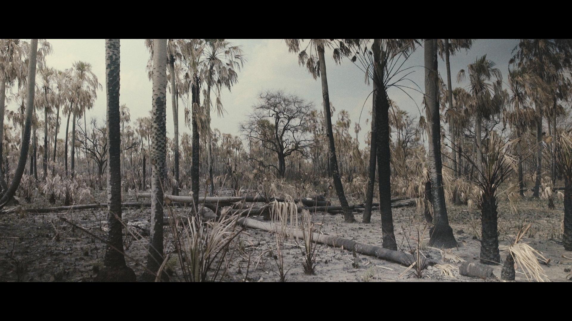 Still del proyecto documental actual  Apenas el Sol, dirigido por Arami   Ullón.