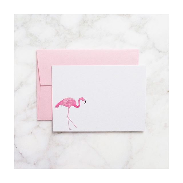 You can now buy our notecards individually 💌  We also offer free international shipping ✨