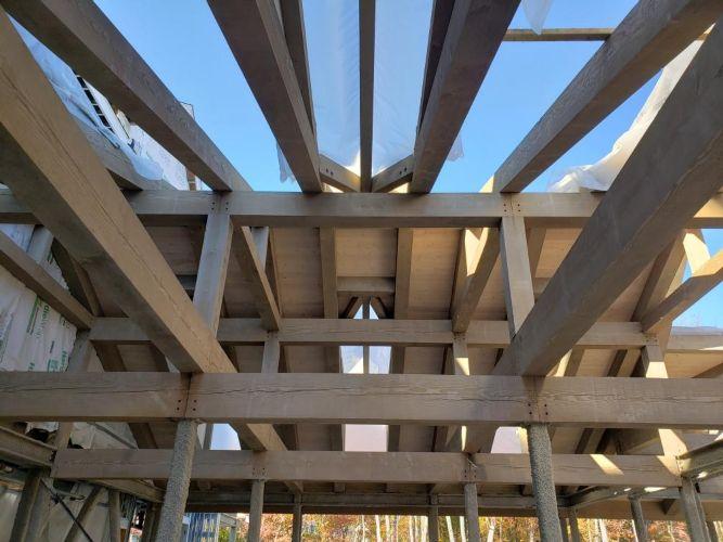 elite-construction-rentals-llc-maplewood-senior-living2.jpg