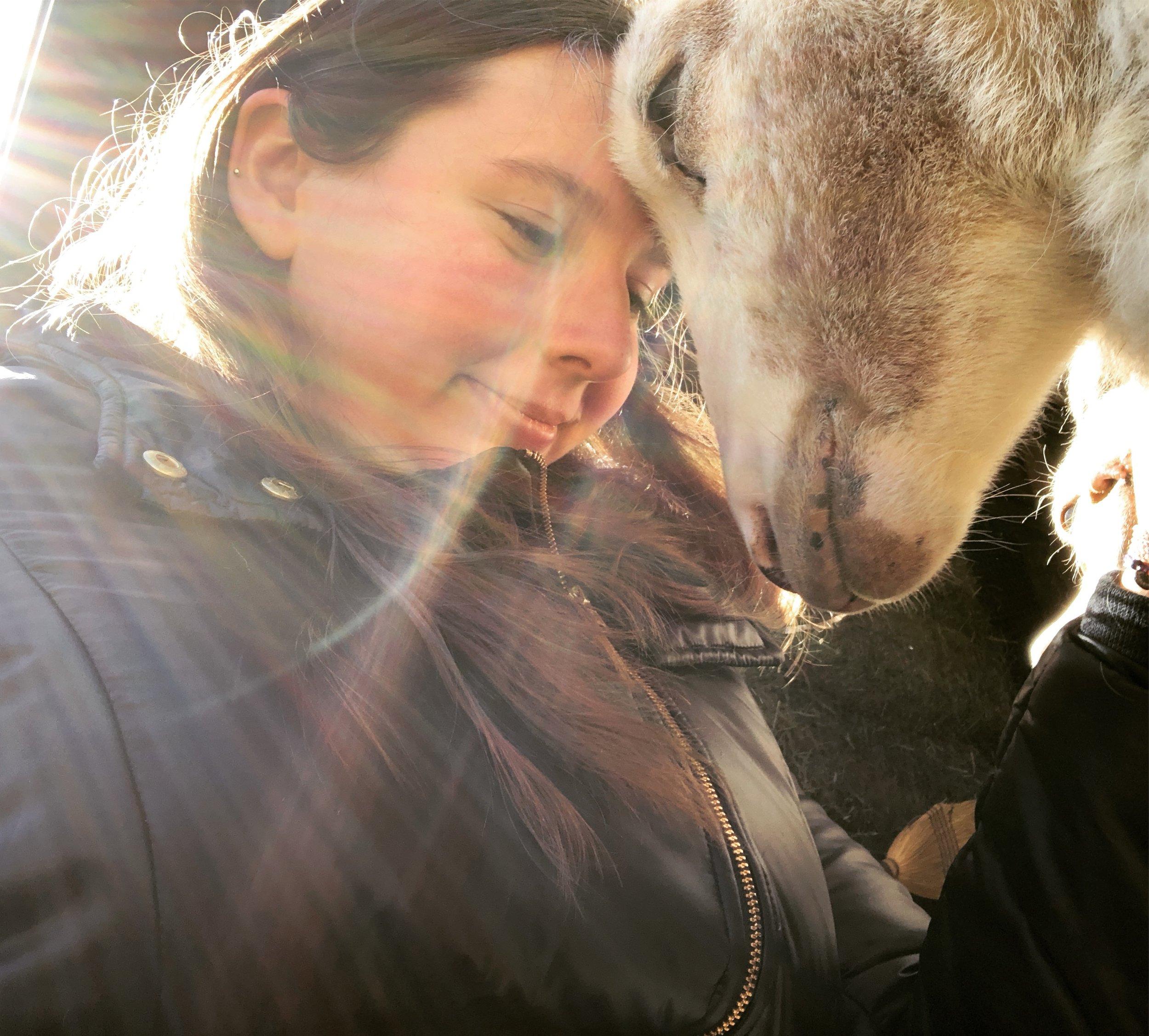 Catskill Animal Sanctuary, 3/18