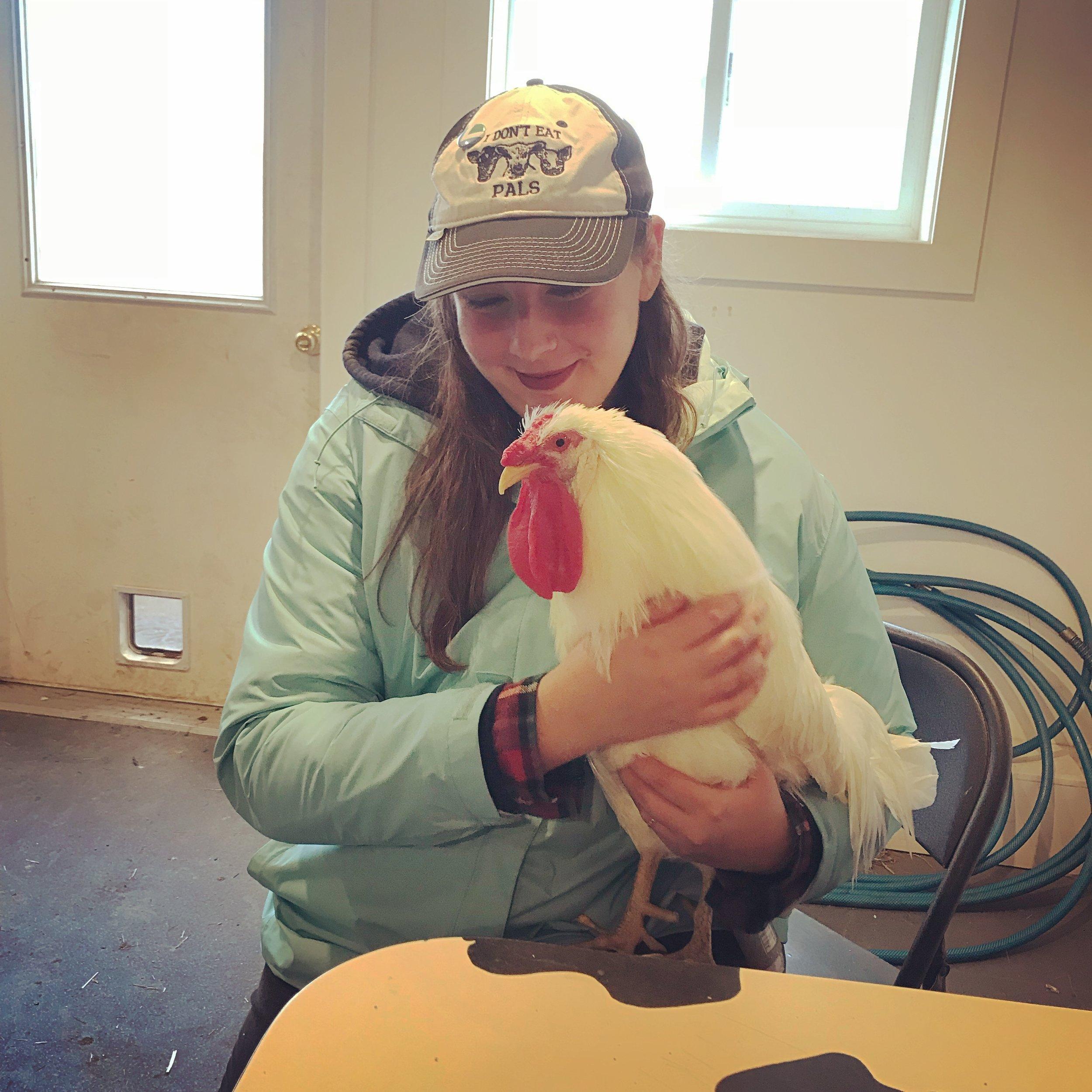 Woodstock Farm Sanctuary, 11/17