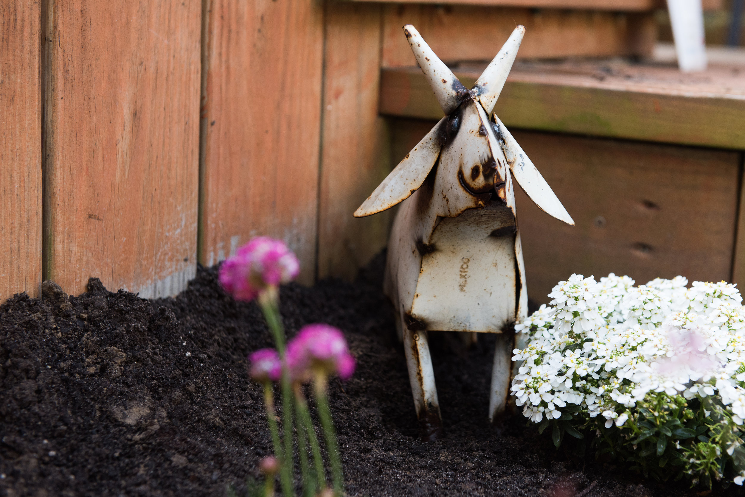 How to Plant a Bee Garden: DOs and DON'Ts