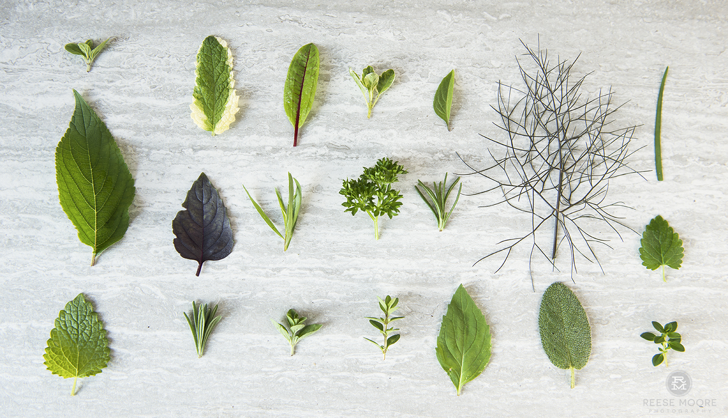 10 Ways An Herb Garden Will Help You Go Zero Waste