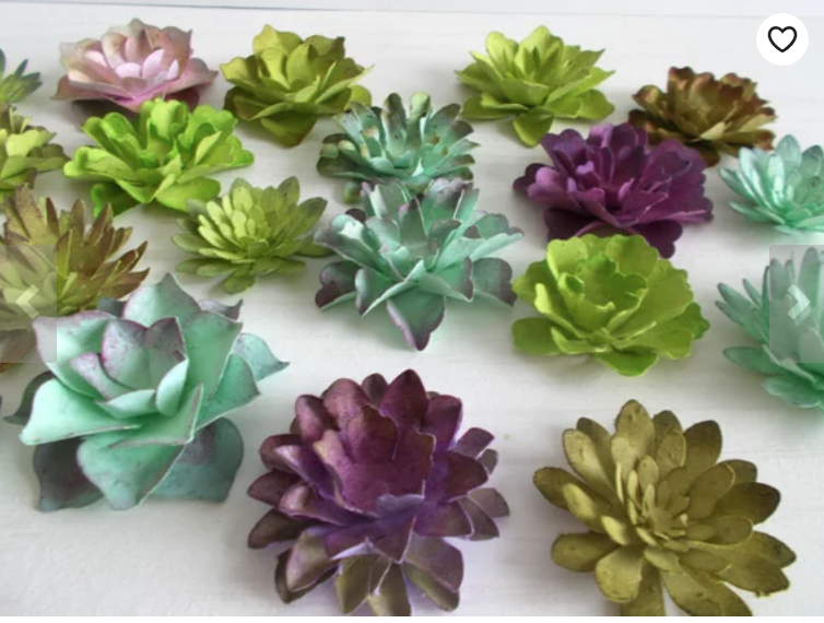 Seed Paper Succulents