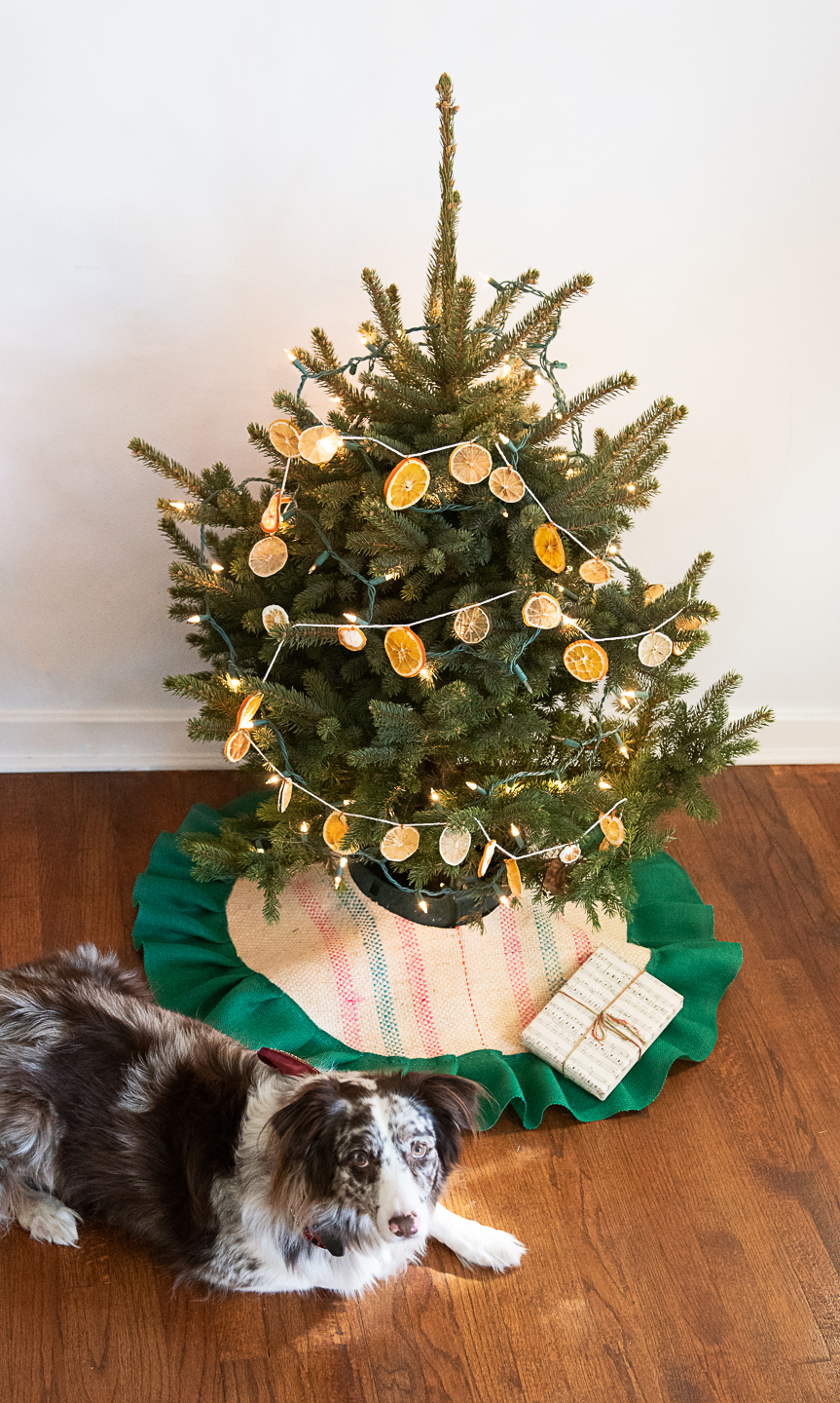 Diy Tabletop Christmas Tree Skirt From An Upcycled Burlap Coffee Sack Compost And Cava