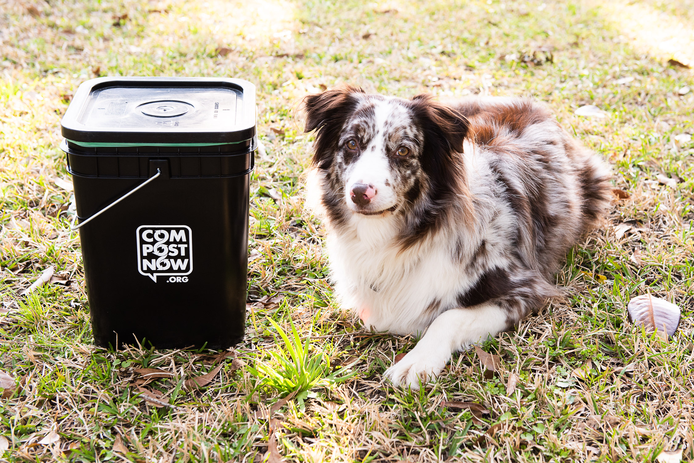 11 Reasons I'm Keeping CompostNow Even Though I Have A Compost System
