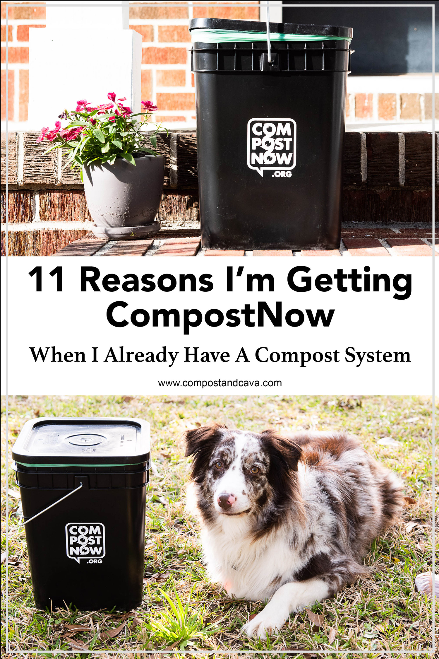 11 Reasons I'm Keeping CompostNow When I Have A Compost System