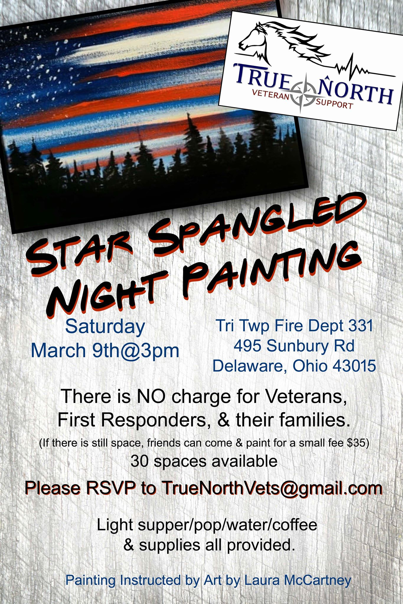 star_spangled_night_painting.jpg