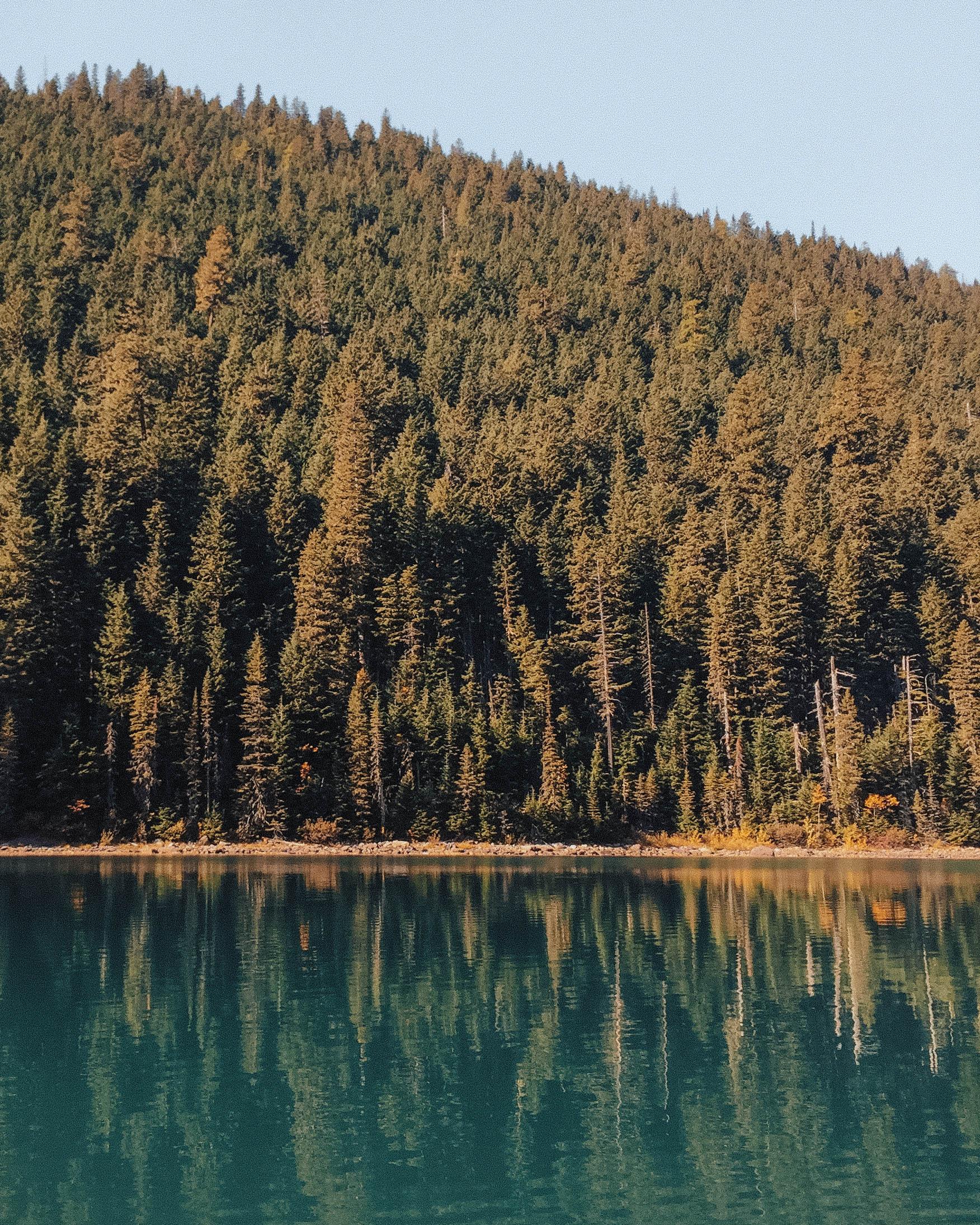 National Parks Camping - The Badlands / Yellowstone National Park /Glacier National Park /Grand Tetons /Arches National Park, Canyonlands National Park /Custer State Park /Black Hills National Forrest /Mount Rushmore, Devils Tower, the Pueblos of Mesa Verde / 3 weeks / iphone 6
