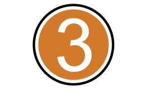 3 icon orange.jpg
