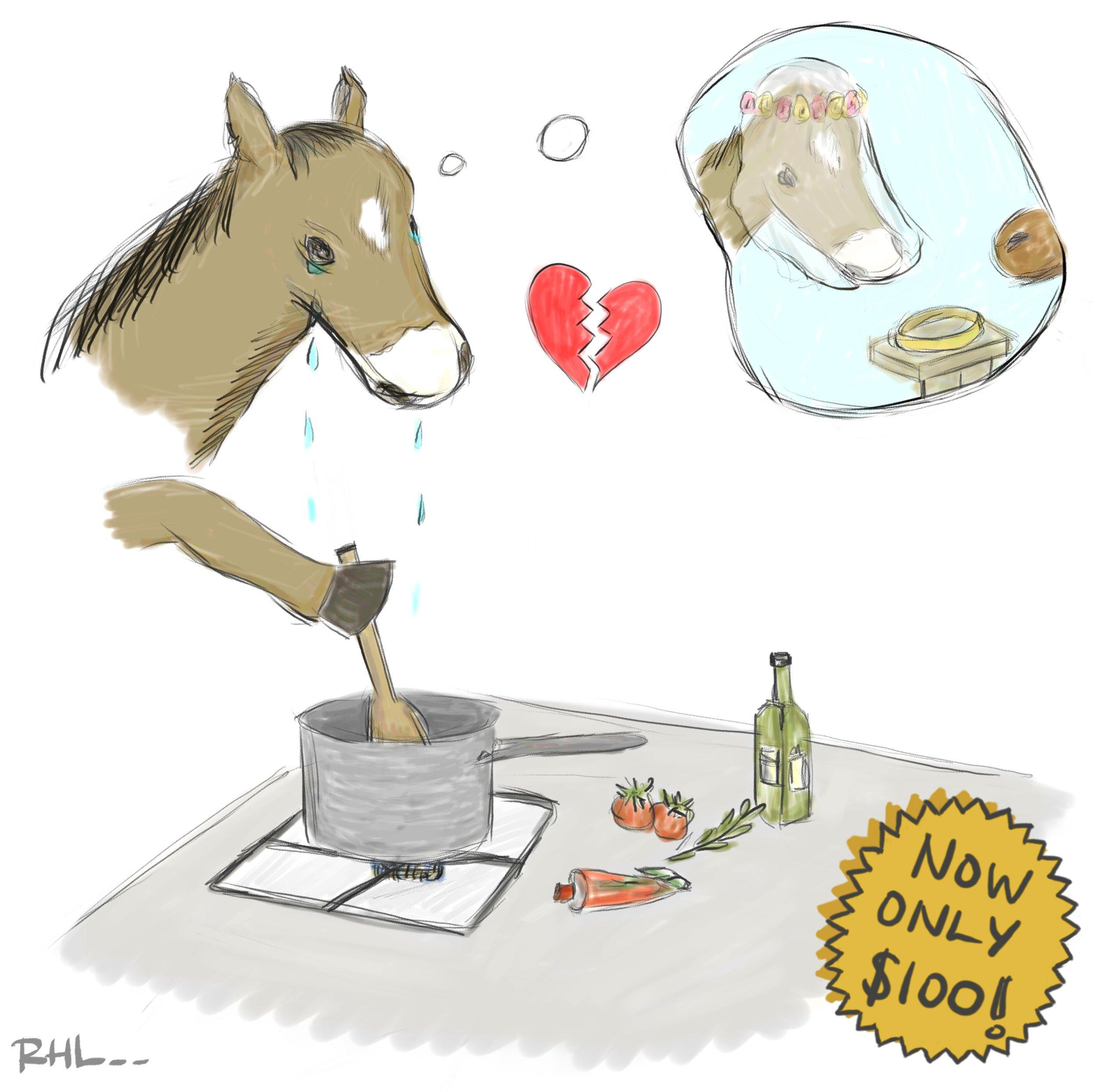 Horse Divorce Sauce Course