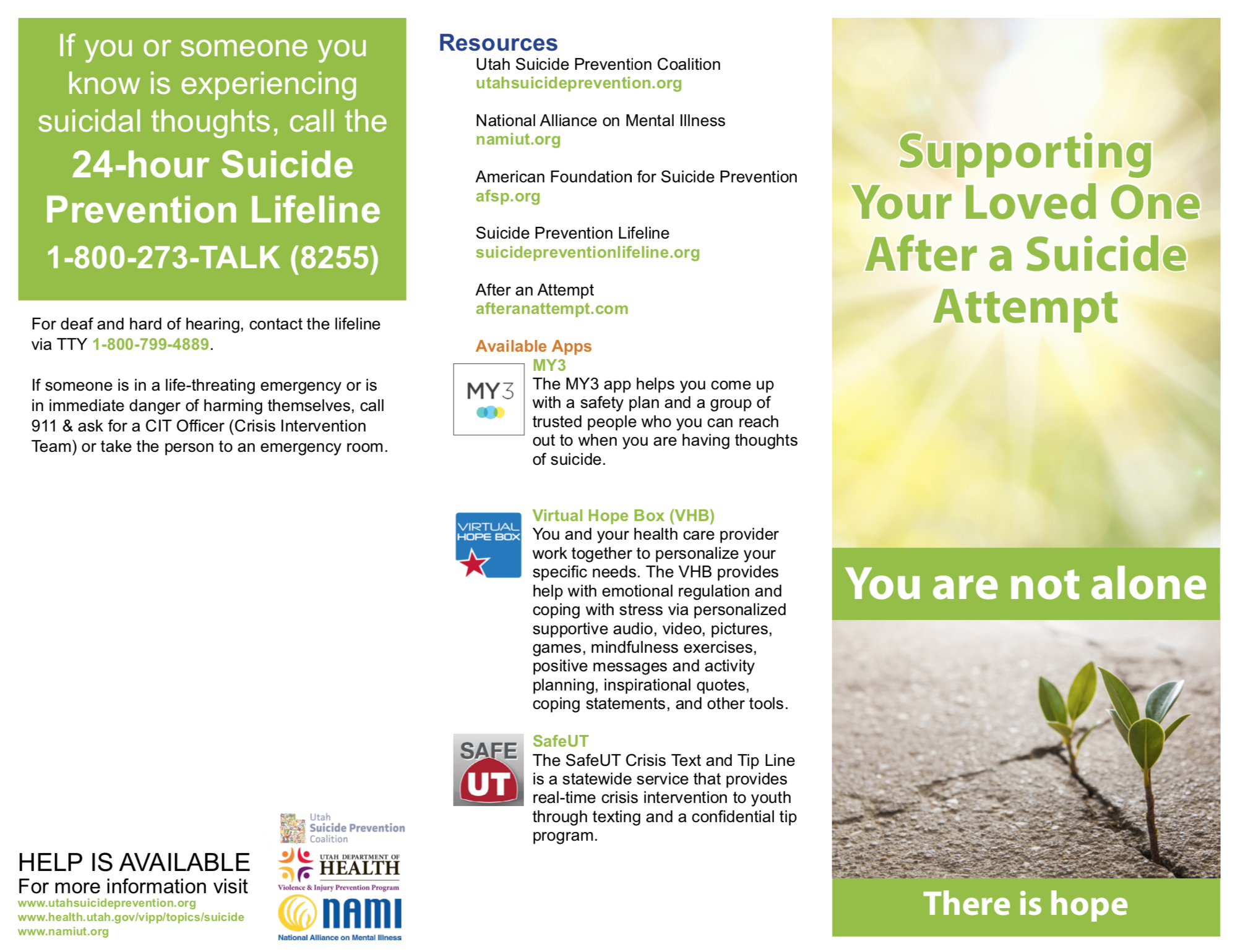 Supporting Your Loved One After a Suicide Attempt (Utah) -   Download