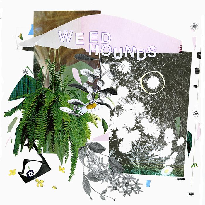 Weed Hounds LP, released on Katorga Works, 2014