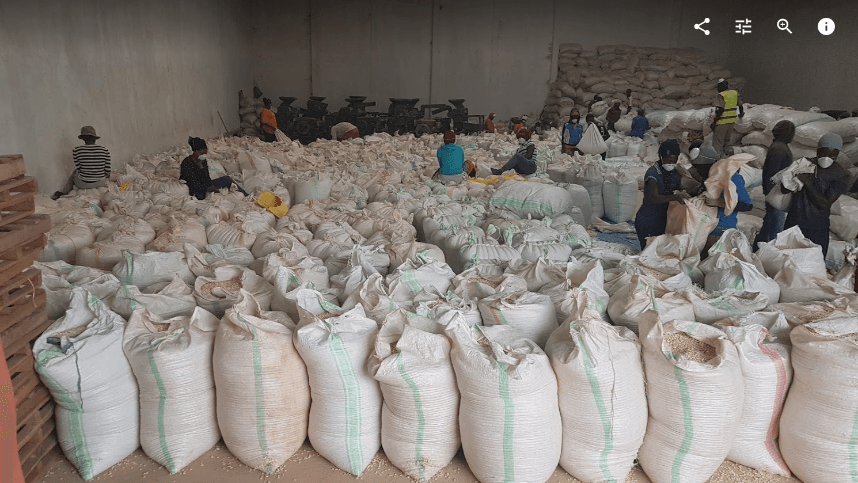 The KUMWE processing facility where maize is shelled, tested and bagged for distribution to our clients