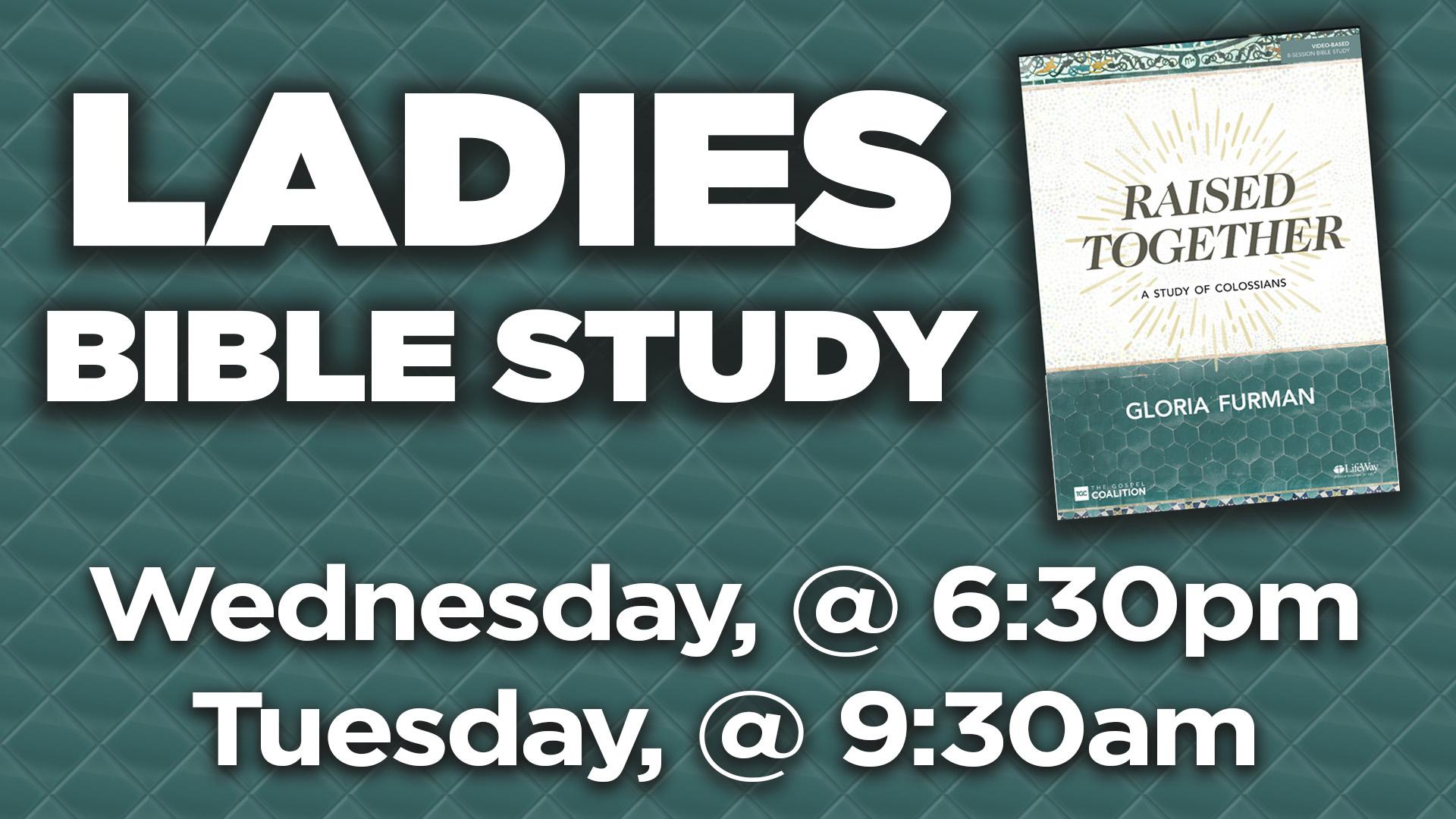 Ladies Bible Study - Seed