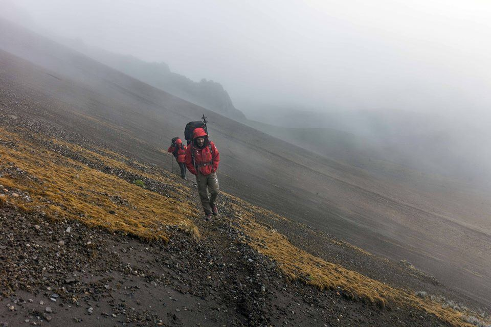 """BACKPACKING - Hike through the Andes, hop on the Inca road and travel back in time, picturing big Inca armies crossing the """"paramos"""" of Ecuador. Spot condors, spectacled bears and mountain tapirs!"""
