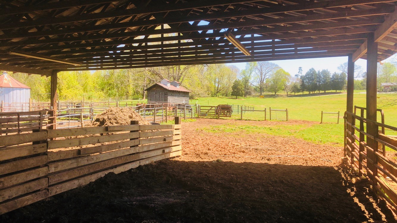 View from one of our cow barns
