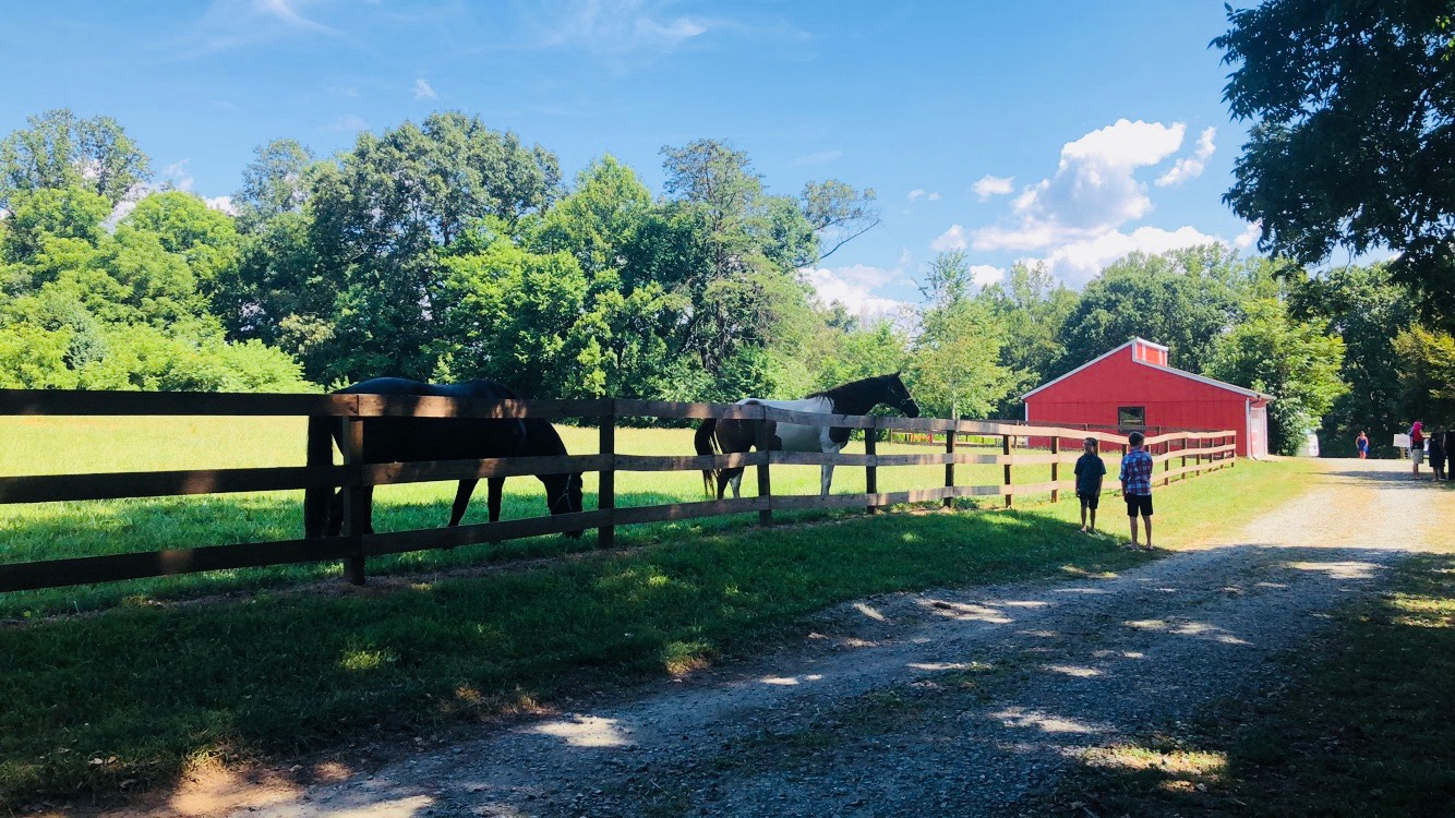 farm event rental at the Historic Venue at Old Holler Farm in Rural Hall, NC
