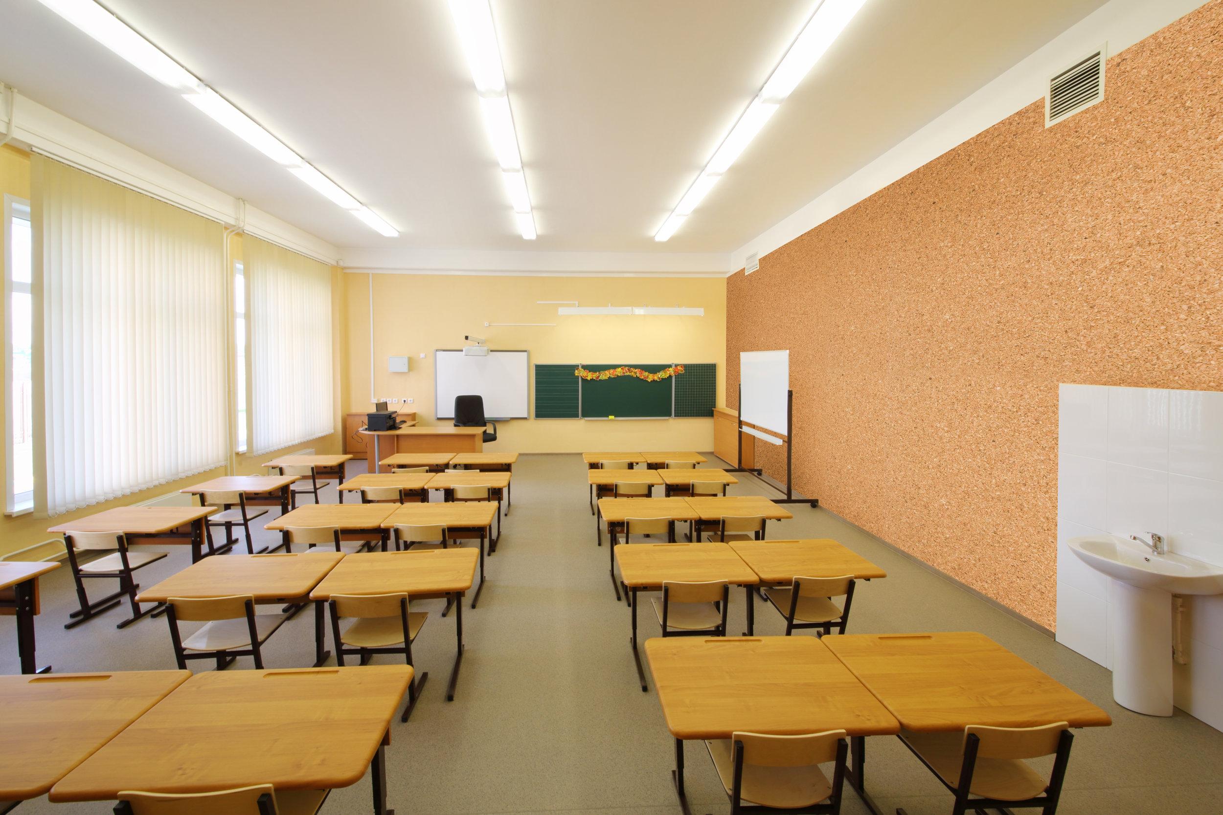 jelinek_classroom_lightbrowncork.jpg