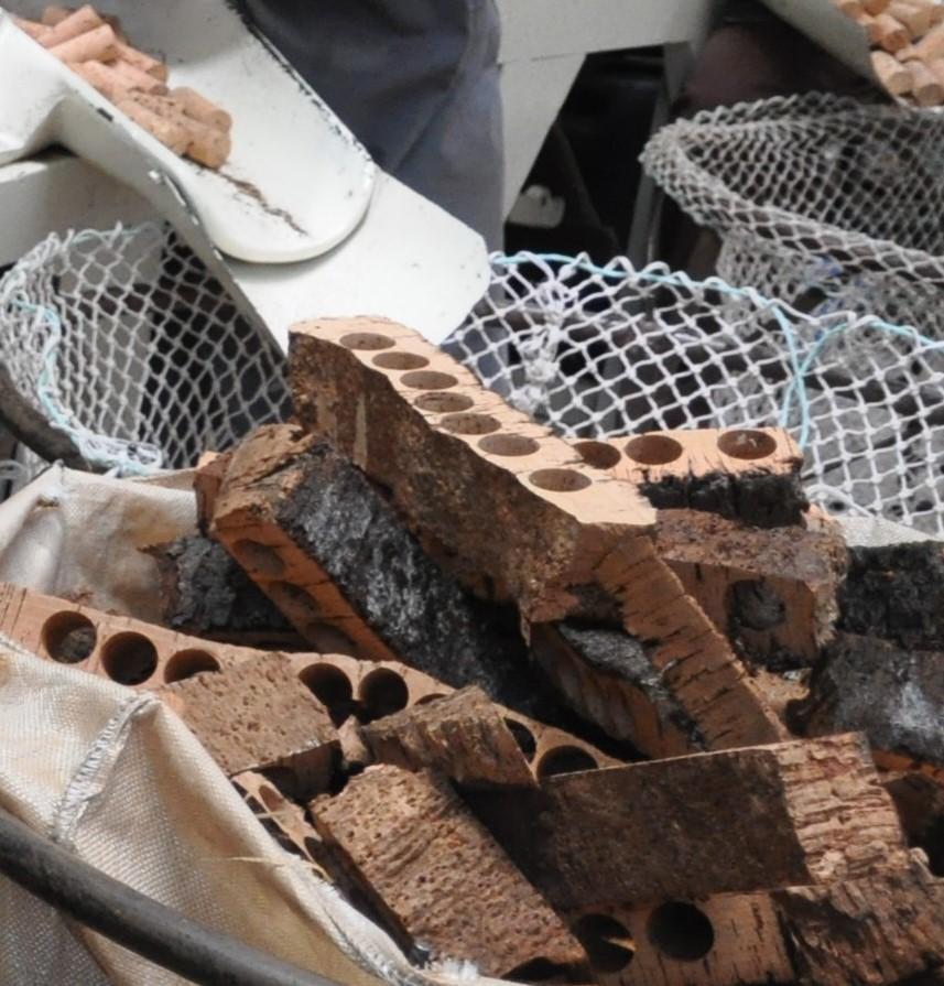 cork-bark-to-stopper.JPG