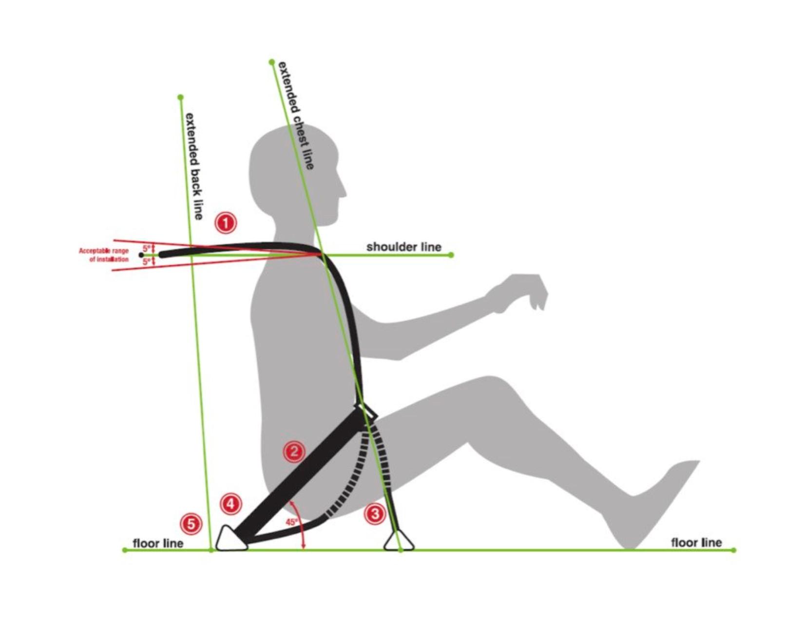 2 inch seat belt graphic 1 1.jpg