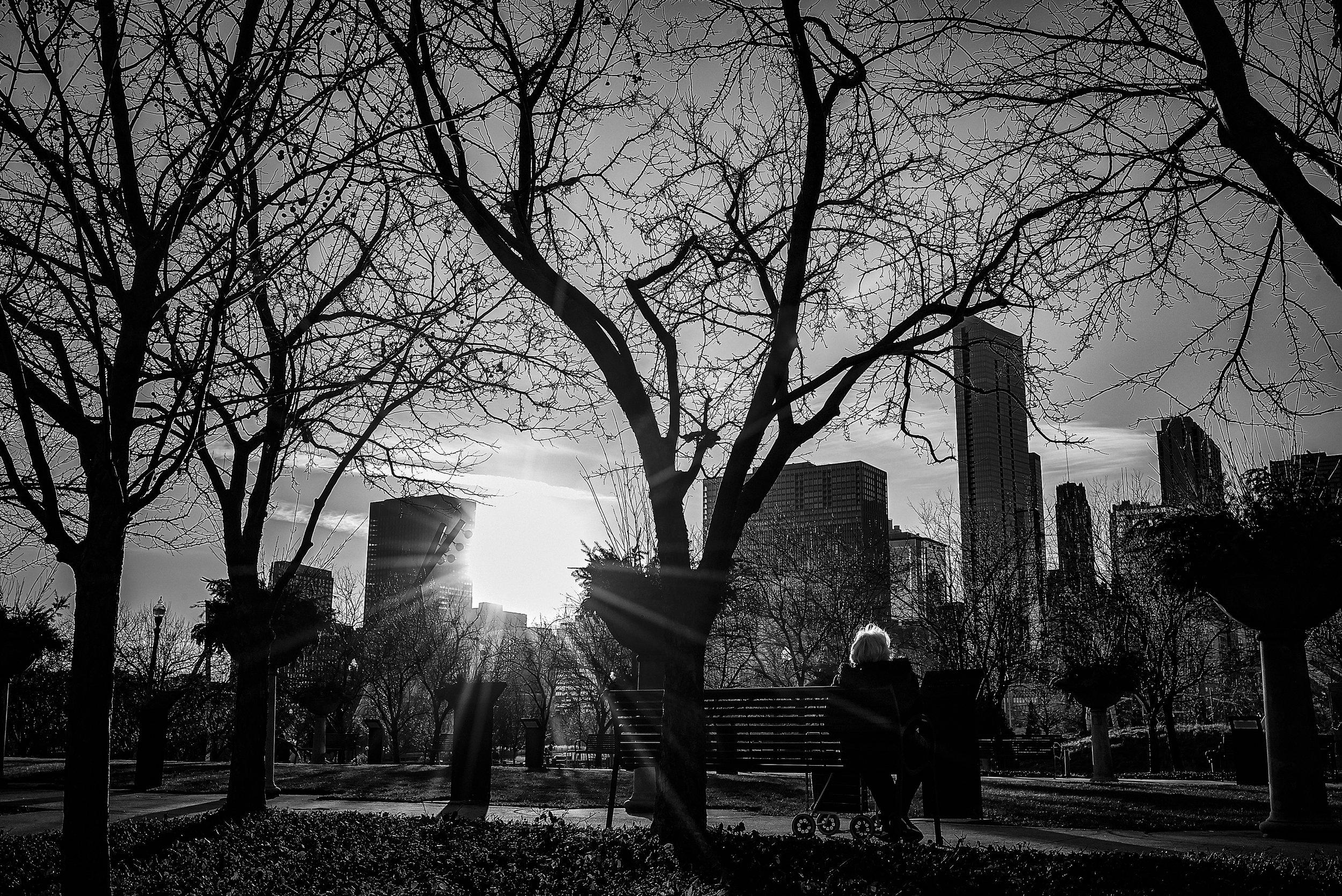Millenium Park Chicago, IL