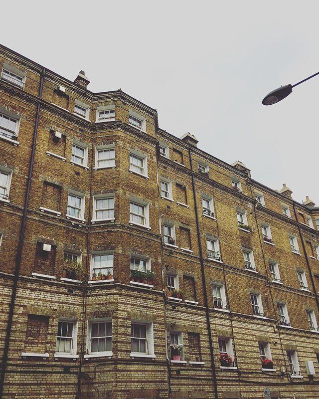 wandering through aldwych 🌿🍂. . . . . #london #walking #wandering #aldwych #buildings #architecture #autumn