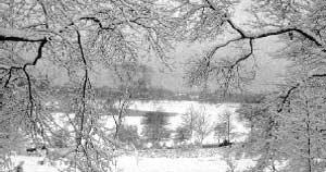 pond-snow-300x158.jpg