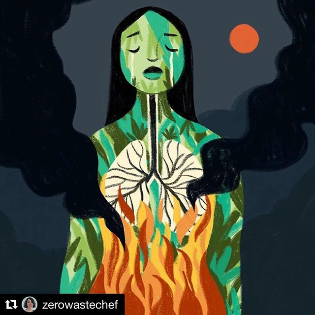"#Repost @zerowastechef with @get_repost ・・・ Artwork by @giovanamedeiros  If you're feeling helpless about the plight of the Amazon, here are some of the actions you can take now: . 1. Donate if you can to NGOs such as @amazonwatch @rainforesttrust @rainforestactionnetwork and others. . 2. Protest. Join @350org @extinctionrebellion or @sunrisemvmt and take to the streets for nonviolent climate protest. According to the BBC, with peaceful protest, once ""around 3.5% of the whole population has begun to participate actively, success appears to be inevitable."" . 3. Don't buy Brazilian beef. Or Brazilian soy, palm oil or wood products. Those four commodities drive deforestation more than any others, with beef coming in at first by a wide margin. . 4. Sign petitions. I link to one in my detailed blog post that expands on this short IG post. Link for the blog post in profile. . 5. Call you elected representatives. Tell them to pressure @jairmessiasbolsonaro to put a stop to the deliberate fires. Tell them that you want environmental protections in place for any trade deals with Brazil. . 6. Use @ecosia as your search engine. . 7. Plant a tree. Or two or three. . I'm doing two fermentation classes next Saturday. All proceeds will go to @amazonwatch. Link in profile to register and for more info on helping the Amazon. This is a climate emergency. . #actforamazonia #actnow #climatebreakdown #fridaysforfuture #ClimateStrike #amazon #amazonia #deforestation #climatechange #climatecrisis"
