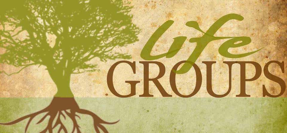 Life Group LOGO 3.jpg