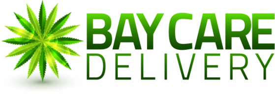 baycaredelivery.png