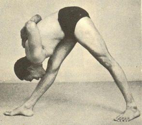 c119688d168d8e34f8ade0faf5602bbe--iyengar-yoga-yoga-asanas.jpg