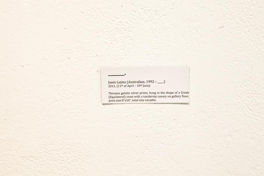 _______.gallery_label.jpg