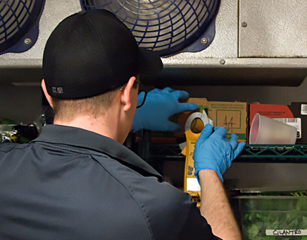 Technician assuring food safety by measuring temperatures inside a walk-in refrigeration unit.