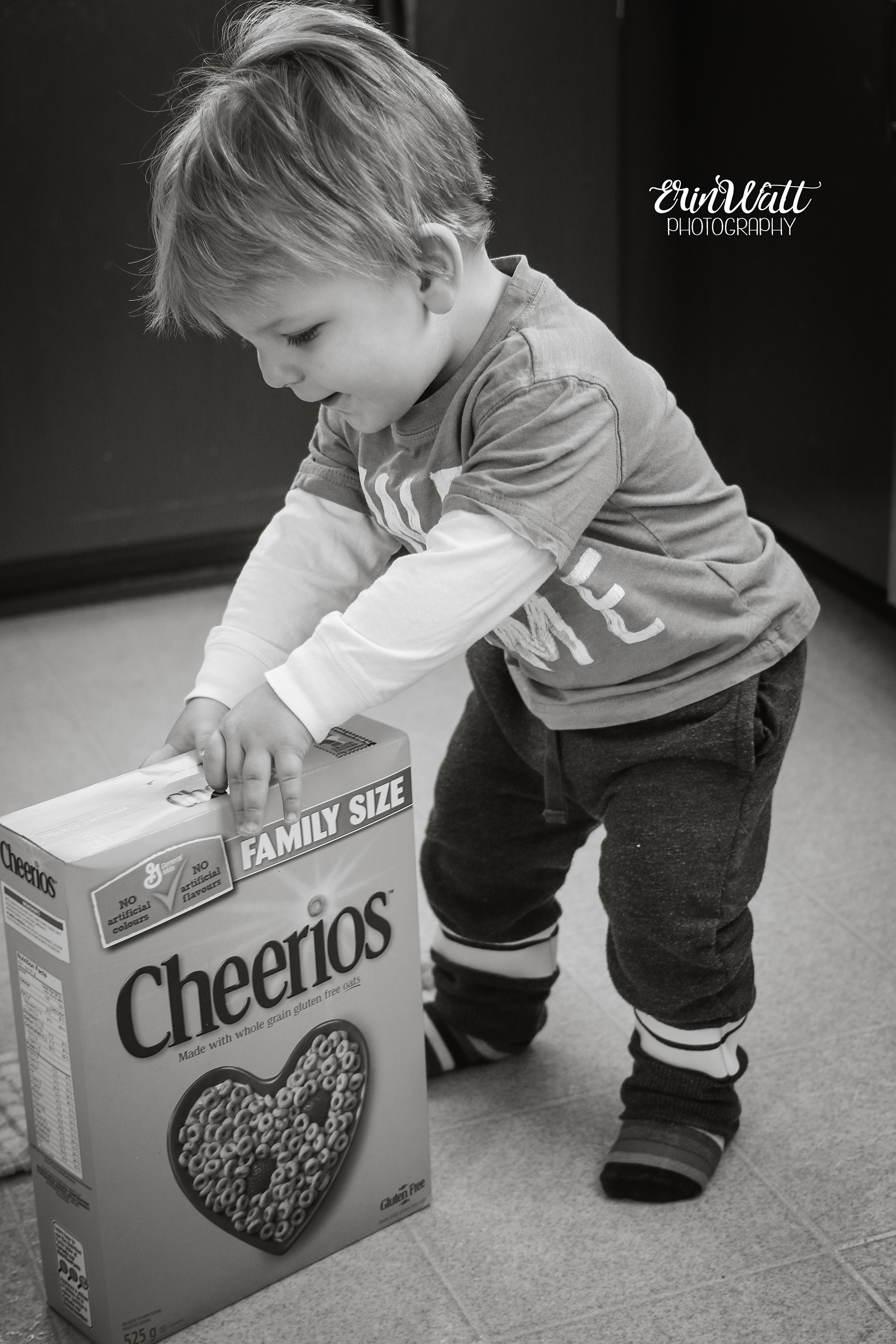cheeriosmonochrome.jpg
