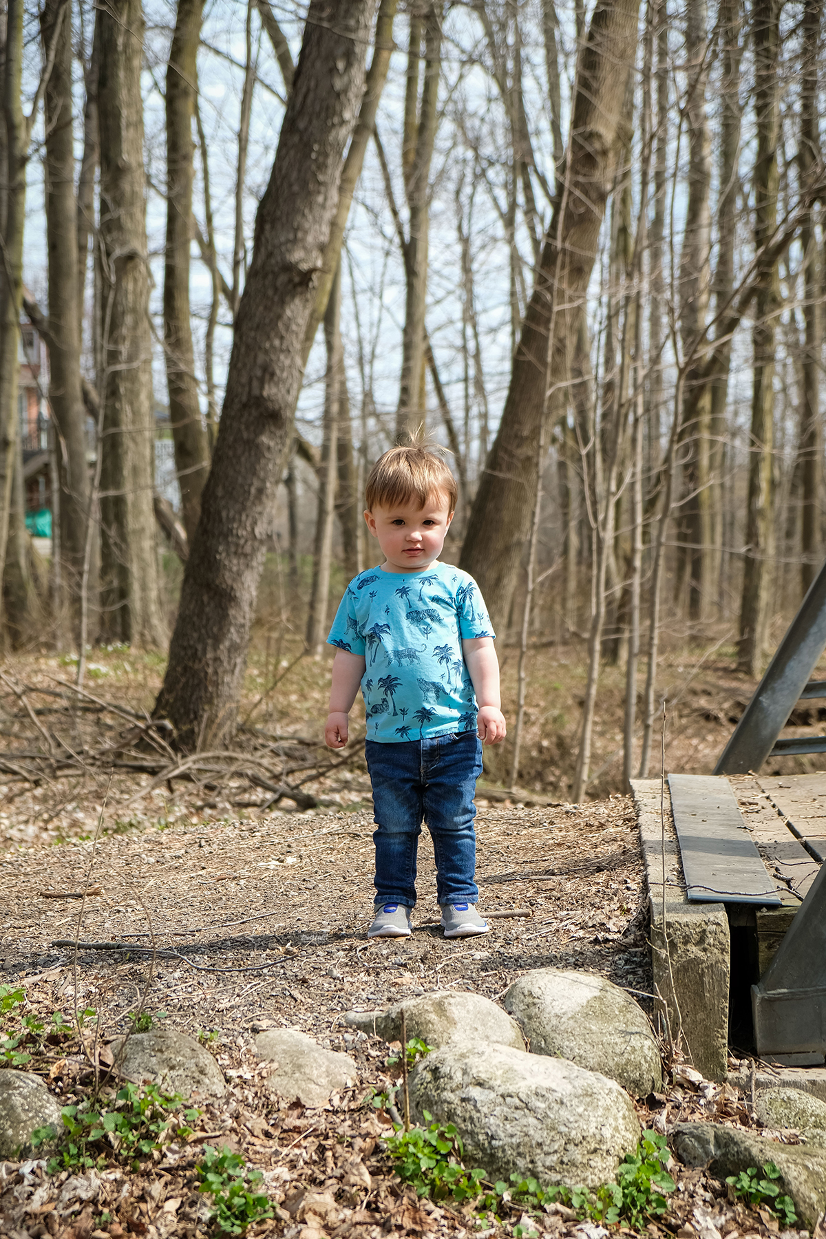 Child outdoors in the forest at the end of a walking bridge with a small smile Family photography Kitchener-Waterloo