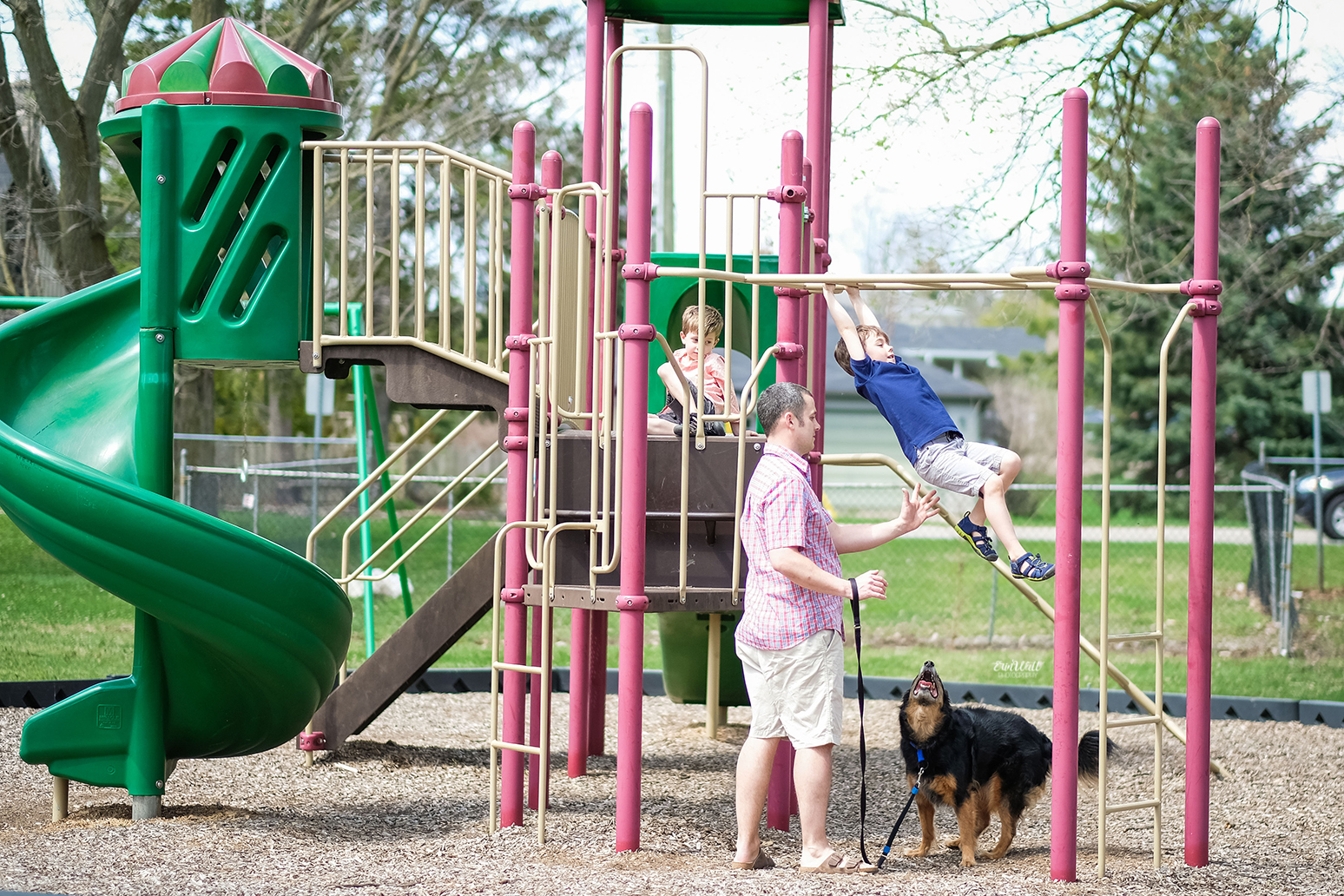 Two young boys playing on a playground while Dad supervises with pet dog outside on a sunny day Family photography Kitchener-Waterloo