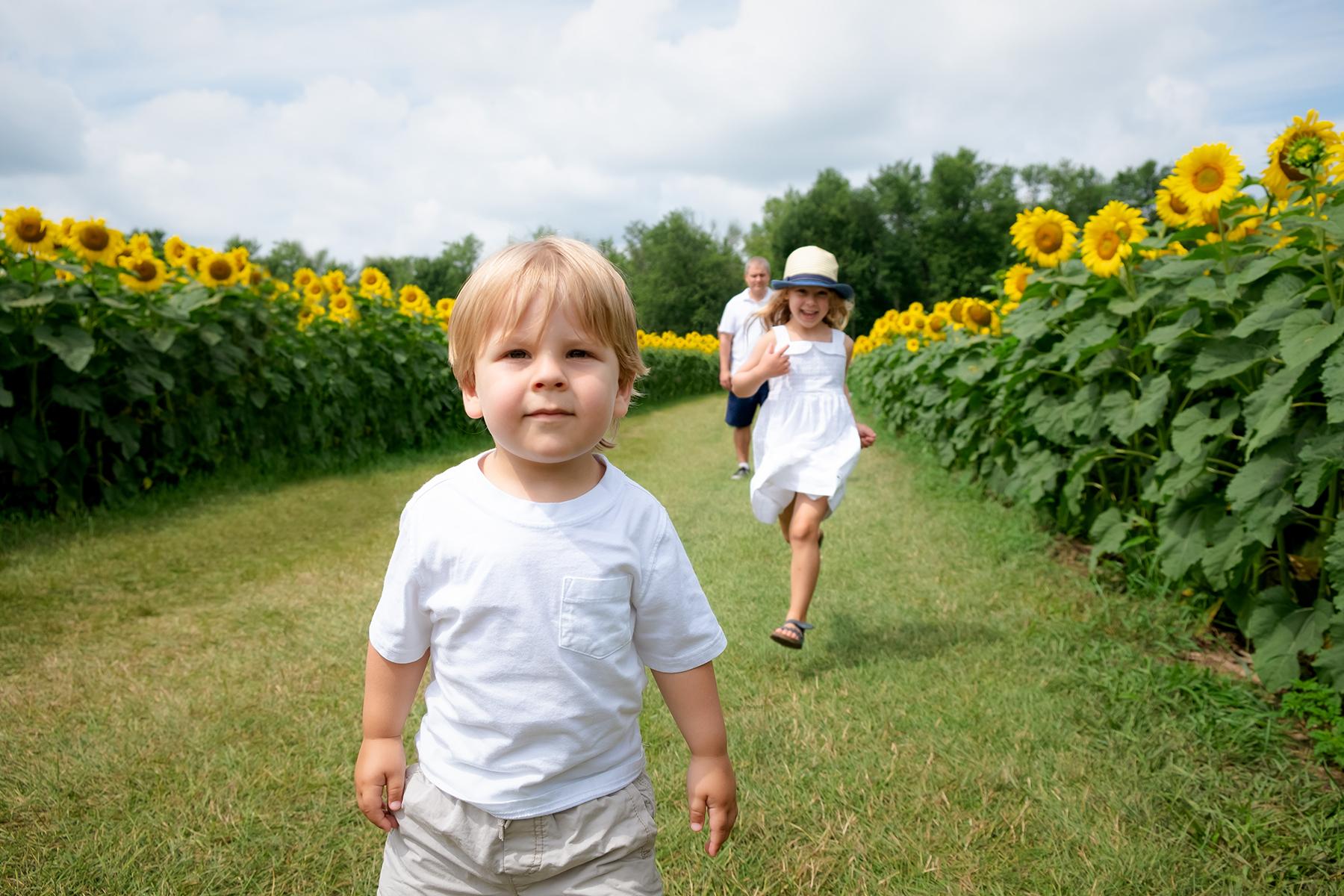 family-photography-kitchener-waterloo-sunflower-farm-2