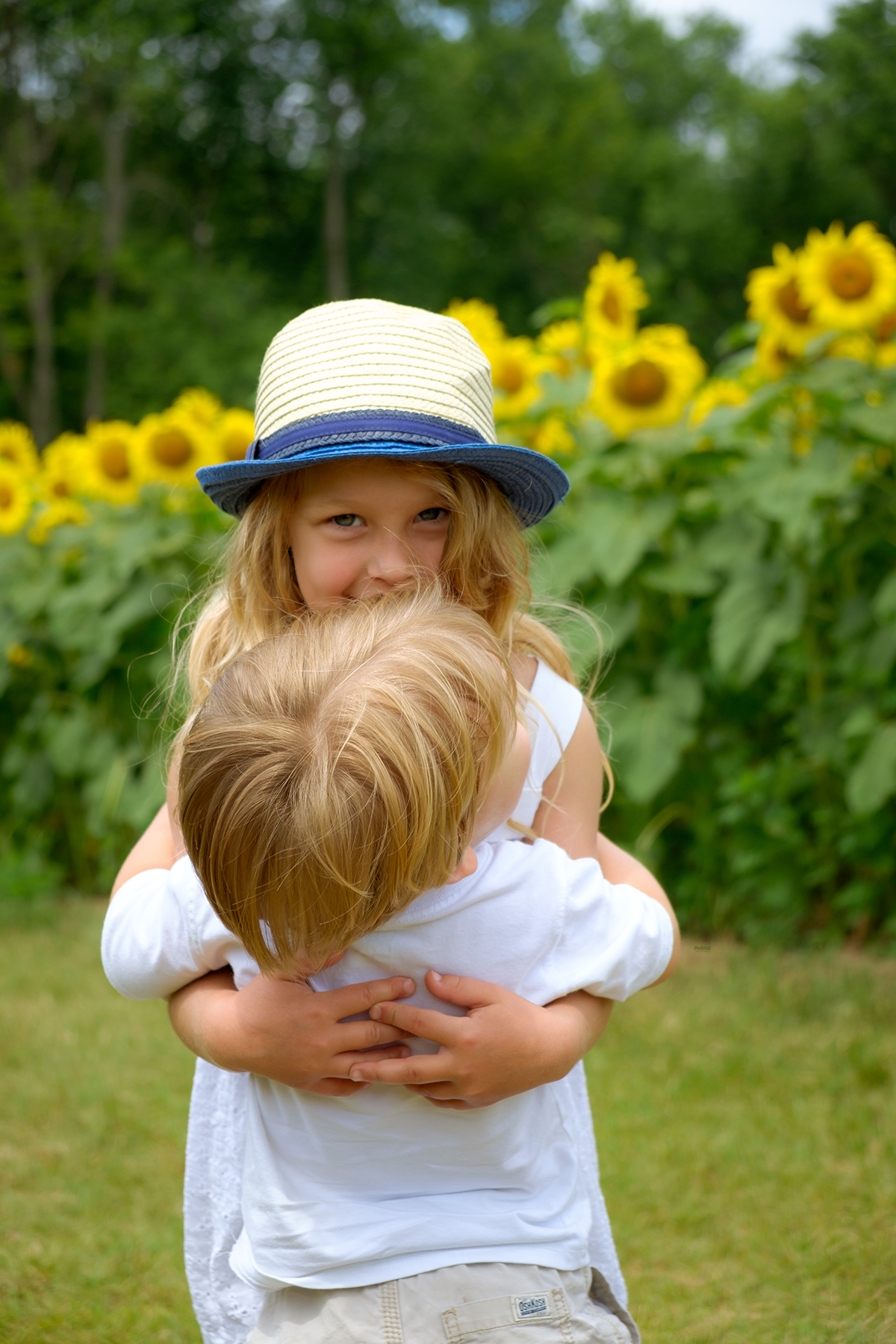 family-photography-kitchener-waterloo-sunflower-farm-6