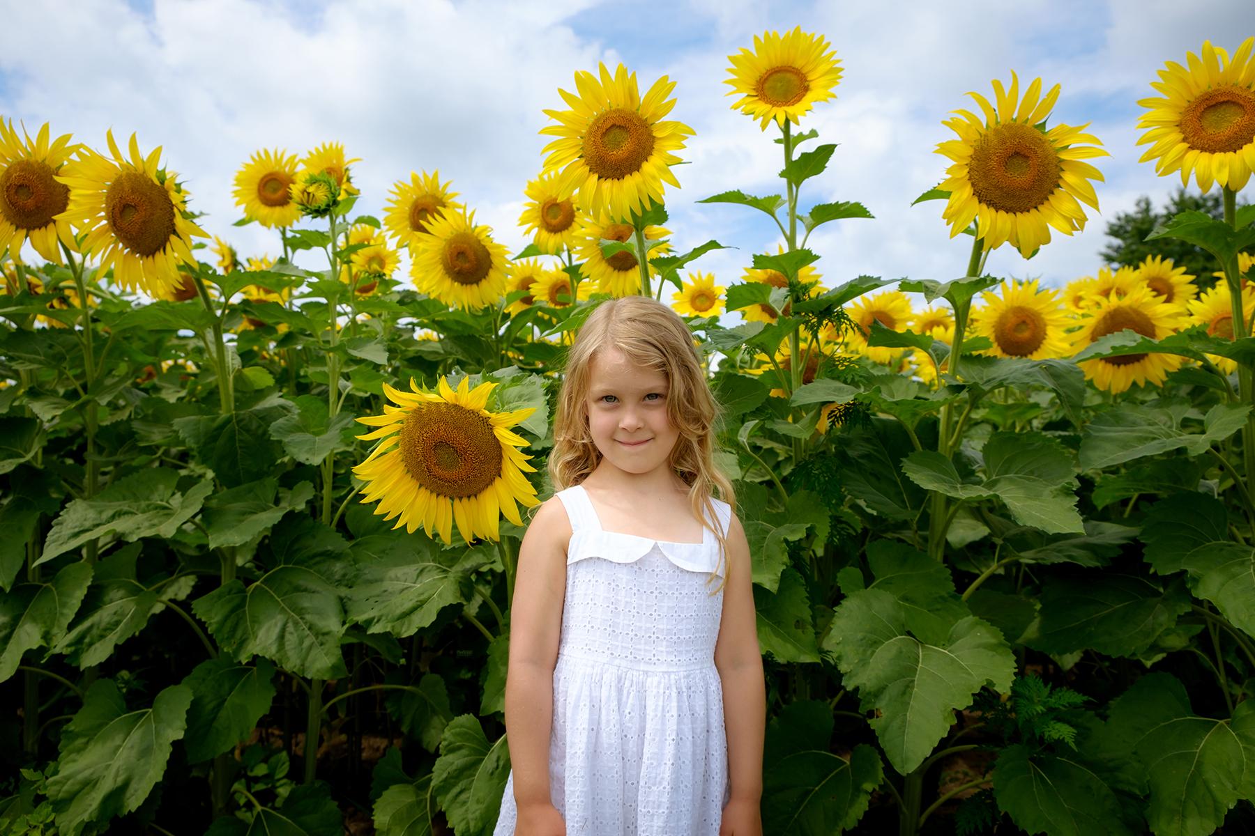 family-photography-kitchener-waterloo-sunflower-farm-9