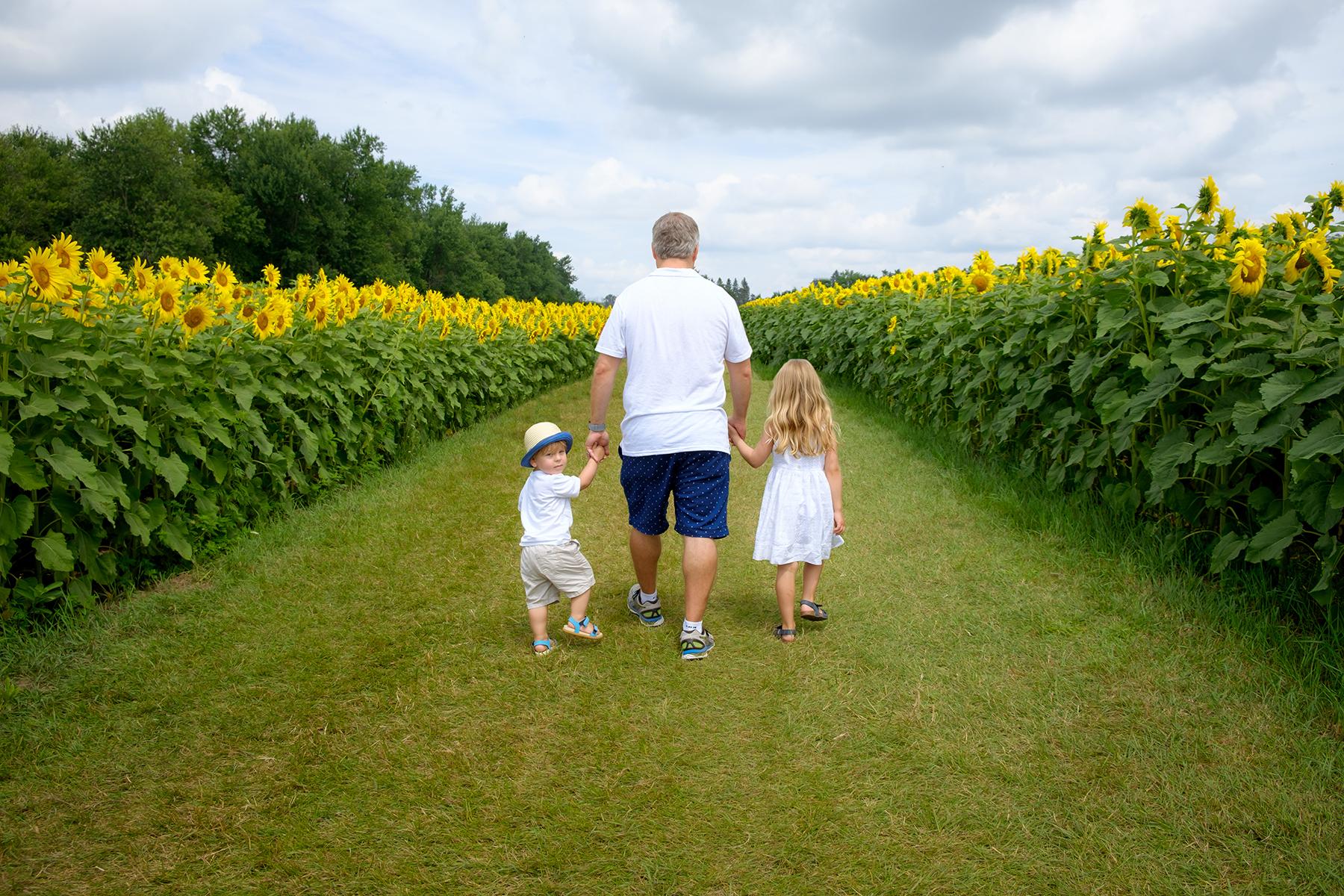 family-photography-kitchener-waterloo-sunflower-farm-10