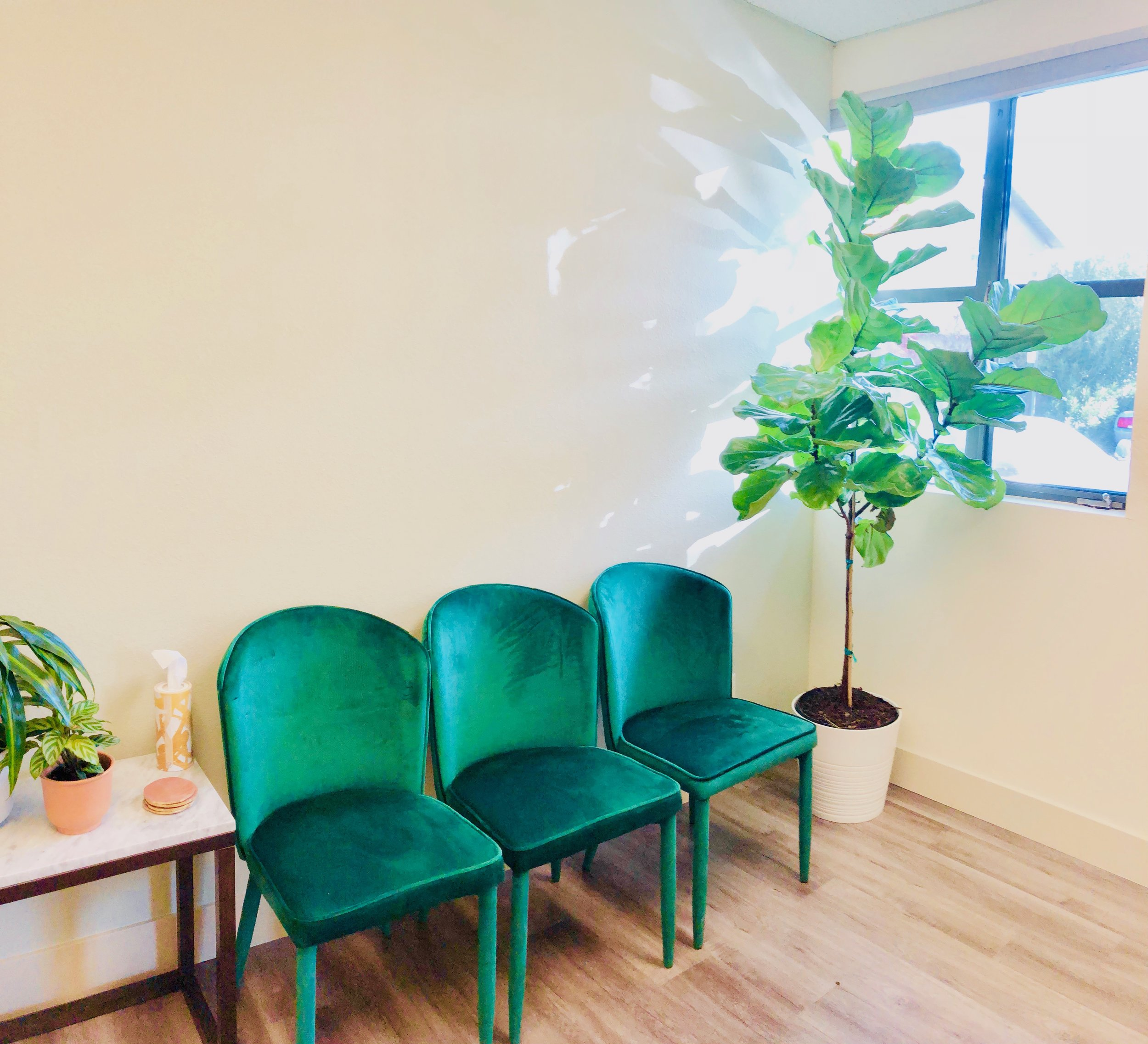 Our Practice - Located in East Sacramento, a grounding healing space awaits your arrival.