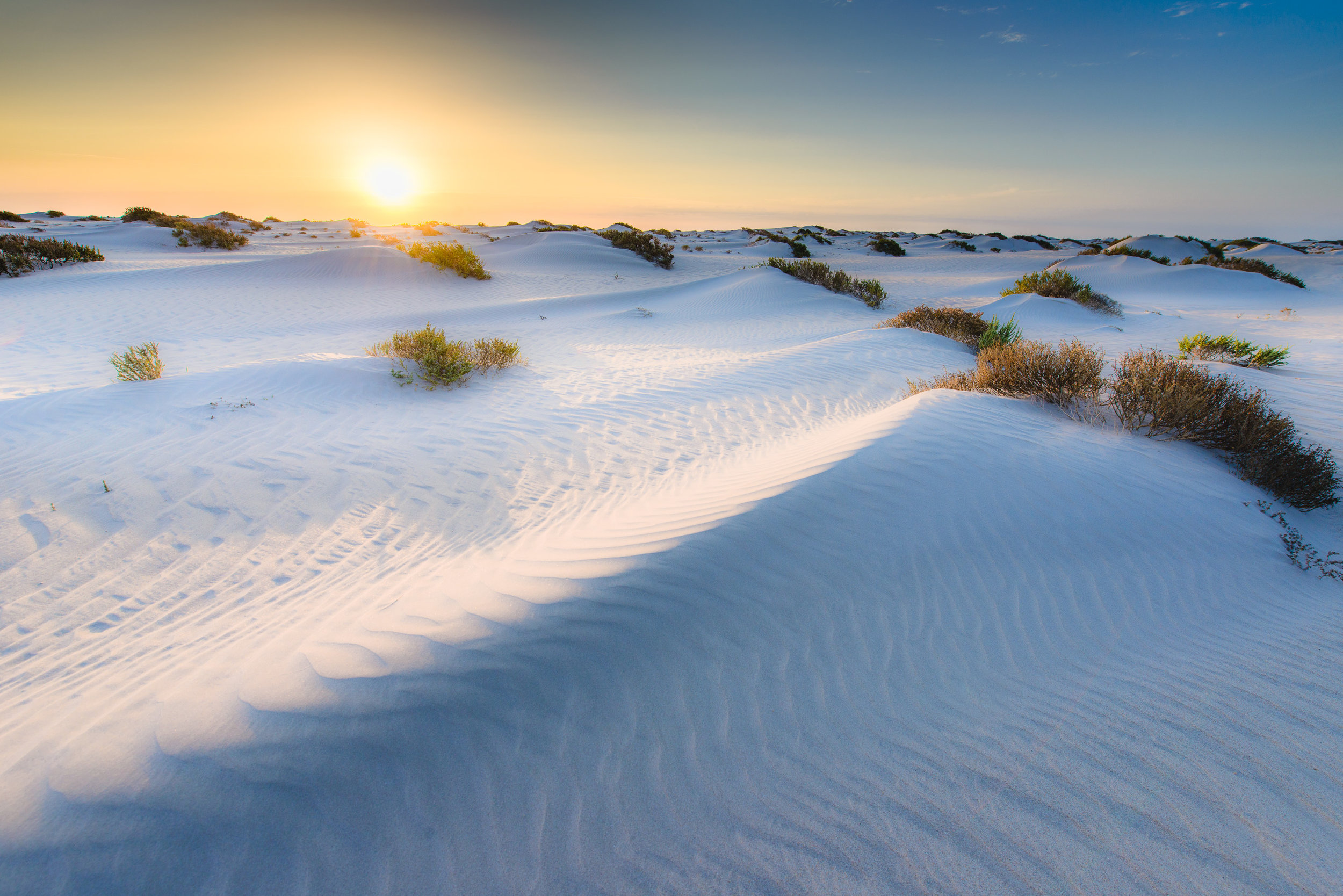 Copy of Western Sahara