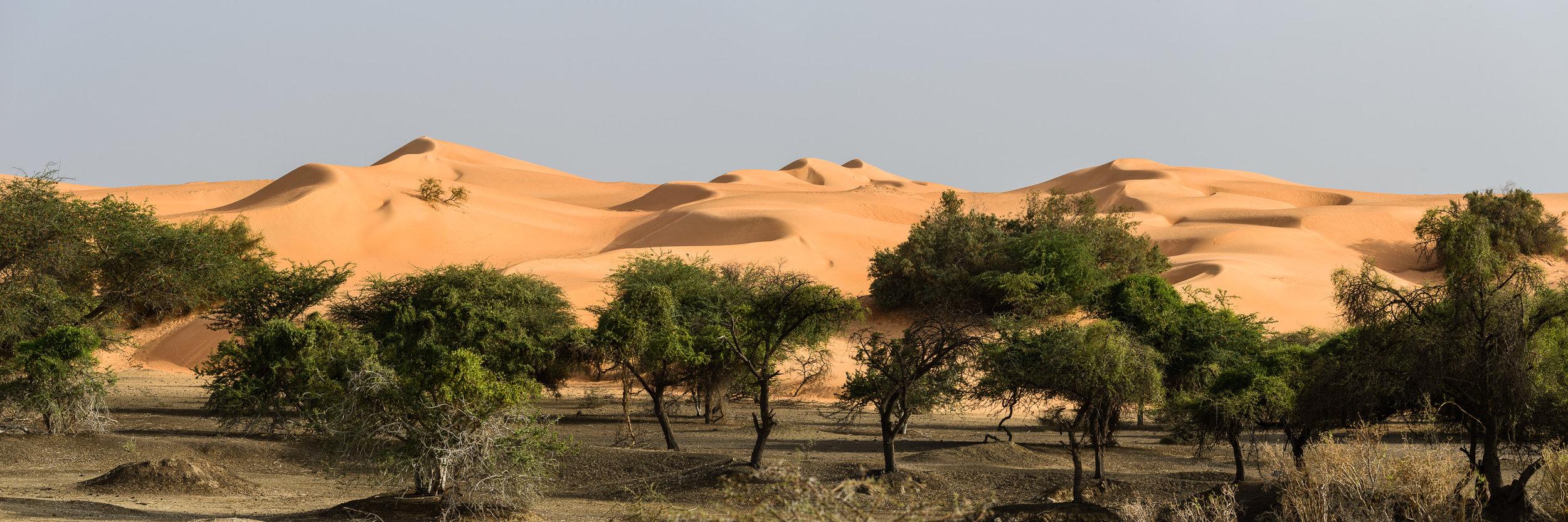 Copy of Mauritania