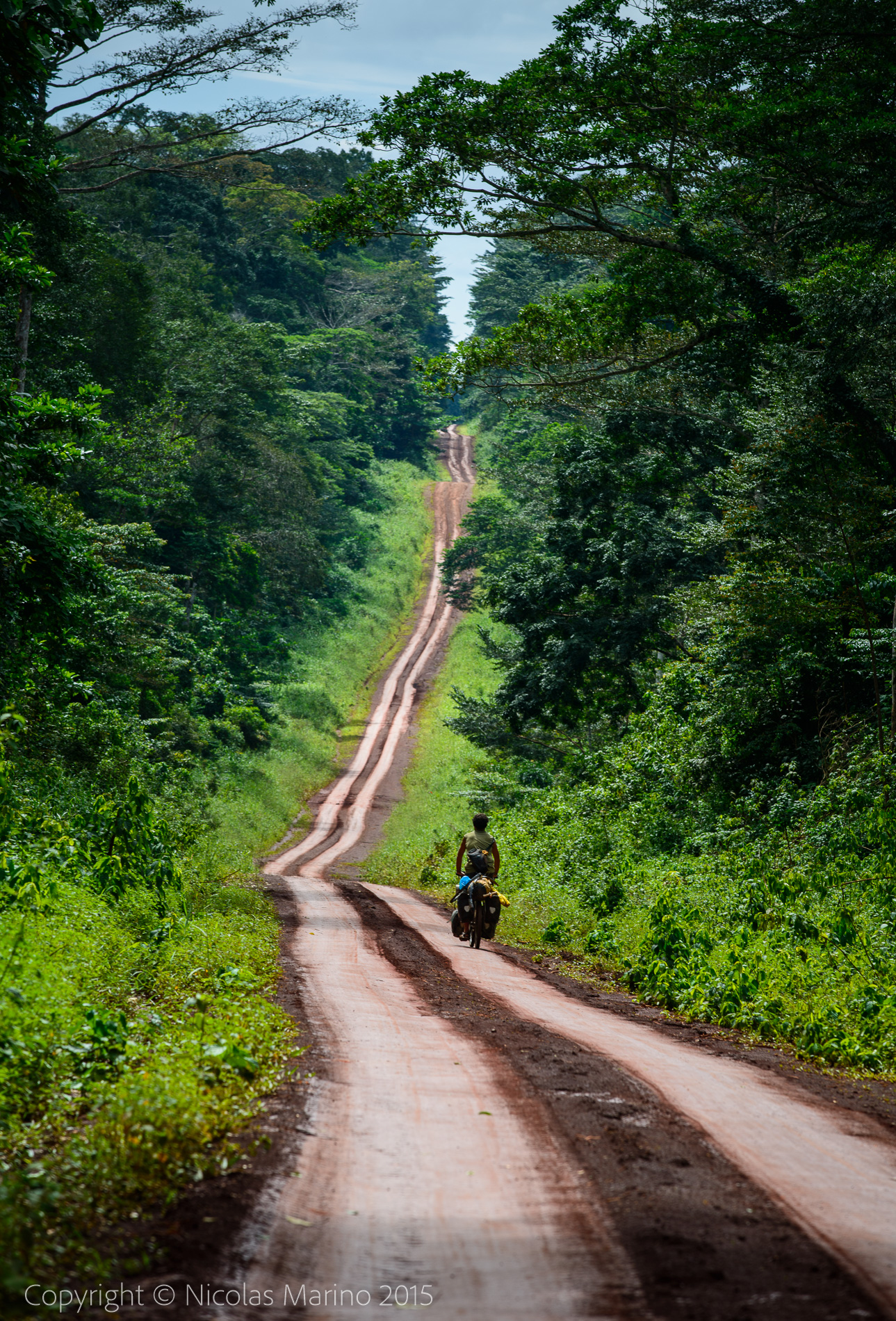 cycling in the equatorial rainforest. Cameroon